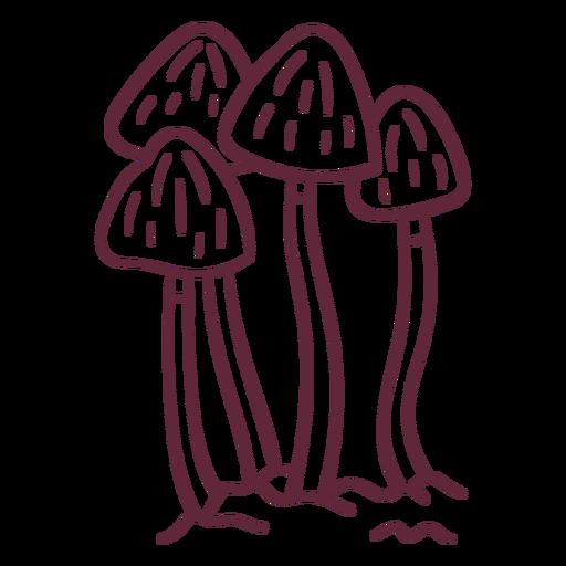 Trazo de hongos hongos