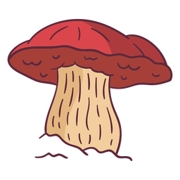 Fungus russula illustration