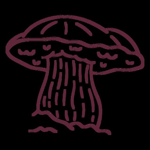 Fungus russula stroke