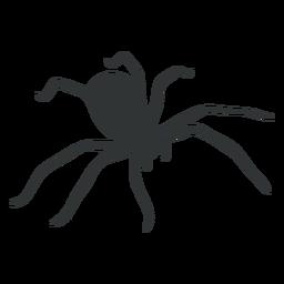 Silhueta de aracnídeo de aranha doméstica