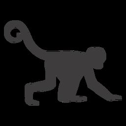 Animal rastejante de macaco