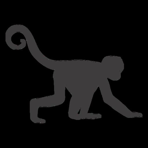 Mono animal arrastrándose Transparent PNG