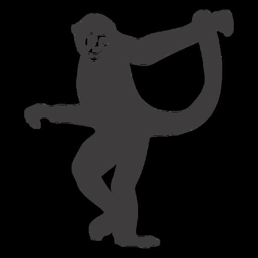 Monkey dancing animal