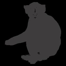 Animal mono sentado