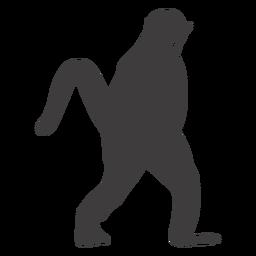 Animal caminando mono
