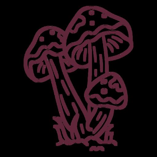 Mushroom amanita caesarea stroke Transparent PNG