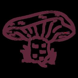 Derrame cogumelo russula