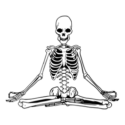 Skull yoga meditate illustration skeleton