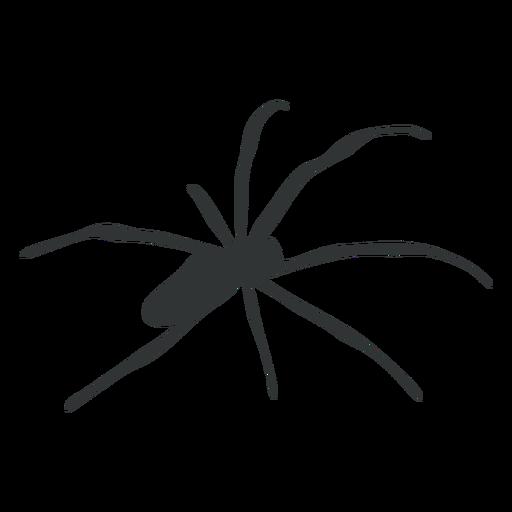 Araña arácnido silueta
