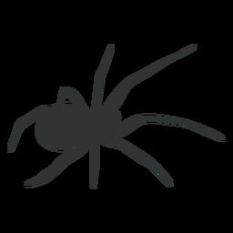Araña silueta de ocho patas