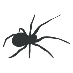 Spider eight legged silhouette