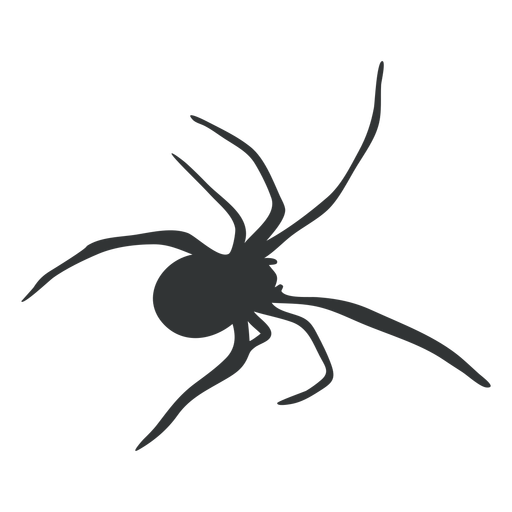 Spider tarantula arachnid silhouette
