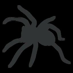 Silhueta de aracnídeo aranha tarântula