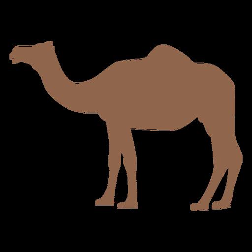 Silueta de perfil de camello