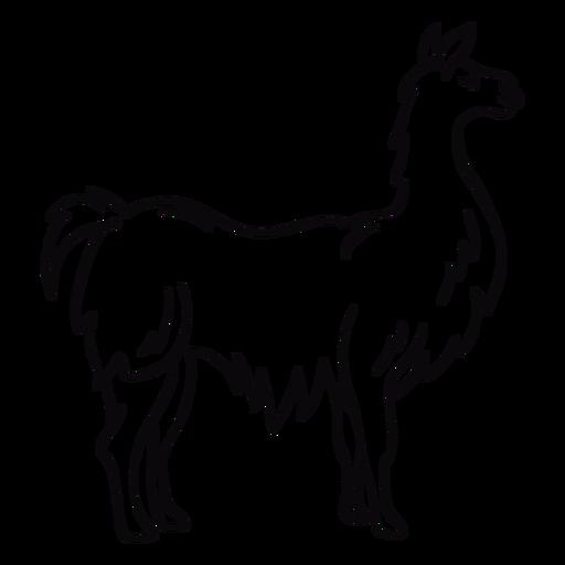 Trazo de perfil de animal de llama Transparent PNG