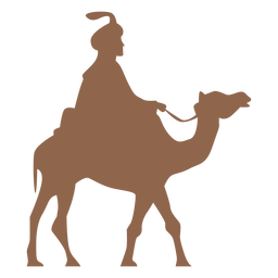 Man riding camel silhouette