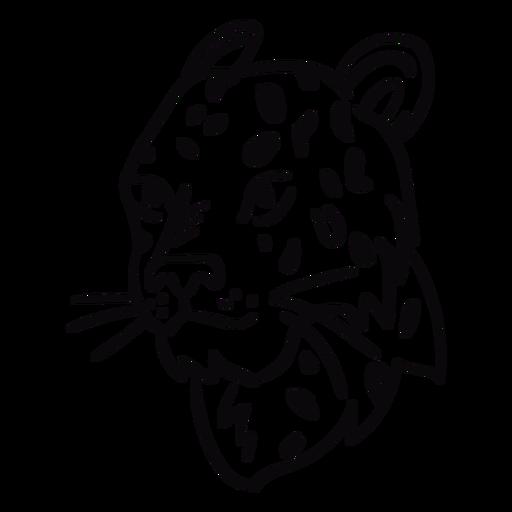 Trazo de perfil de cabeza de Puma