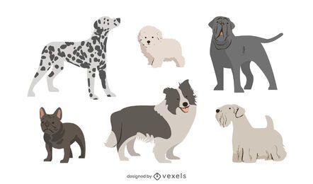 Conjunto de raça de cachorro fofo