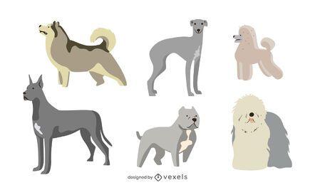 Conjunto plano de raças de cães fofos
