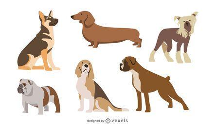 Pacote de raças de cães de design plano