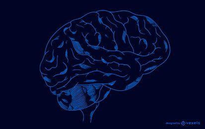 Projeto de ilustração do cérebro transparente