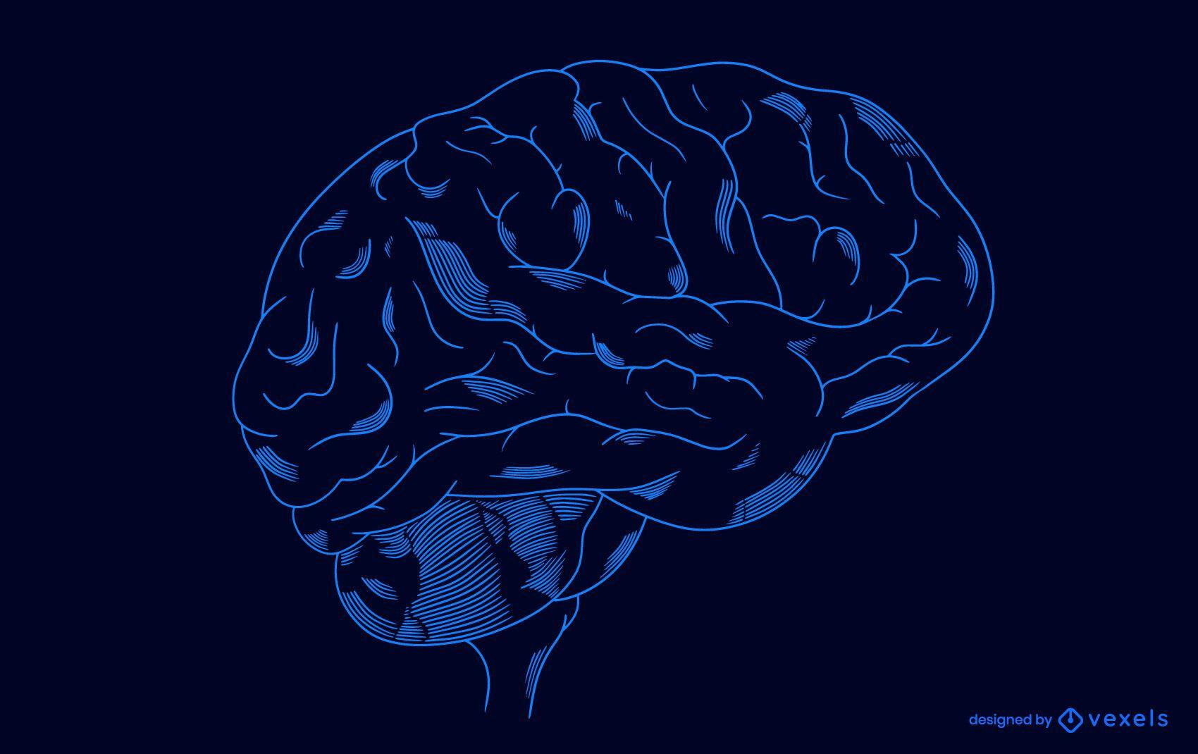 Diseño de ilustración de cerebro transparente