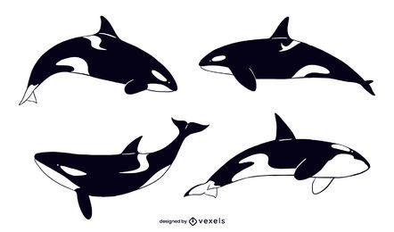 Conjunto de ilustración de ballena asesina