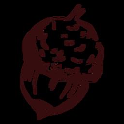 Acorn detailed hand drawn acorn