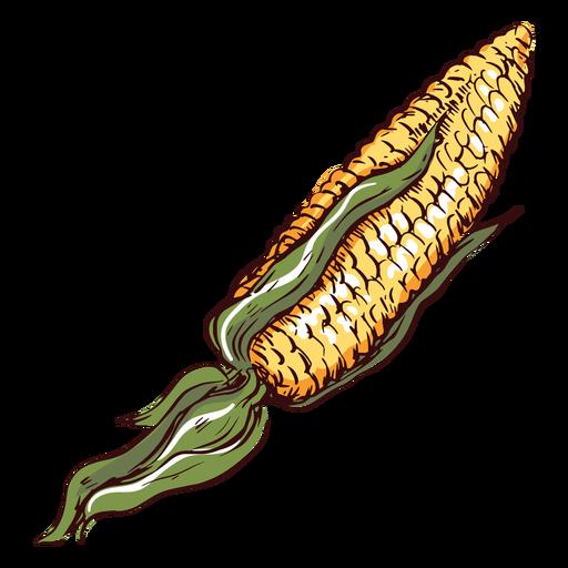 Detailed corn illustration corn