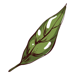 Detailed green leaf illustration leaf