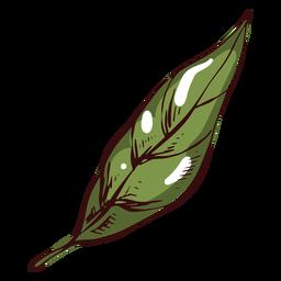 Hoja de ilustración de hoja verde detallada