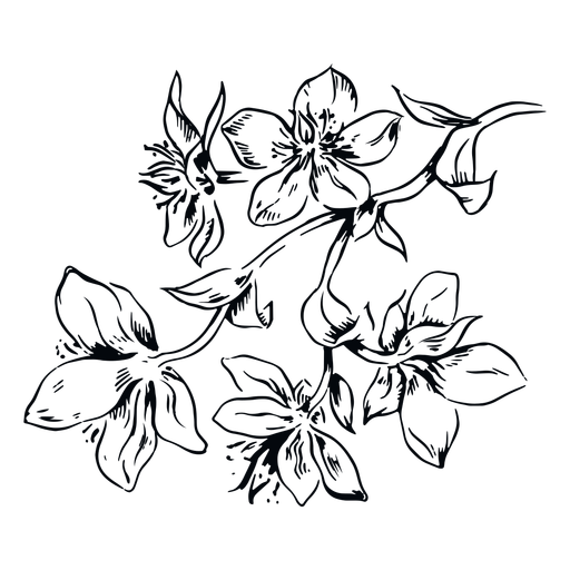 Flowers branch black and white illustration flowers