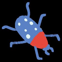 Flying beetle flat beetle