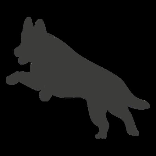 German shepherd jumping silhouette dog