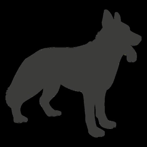 Cão pastor alemão silhueta lateral
