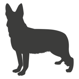German shepherd standing silhouette dog