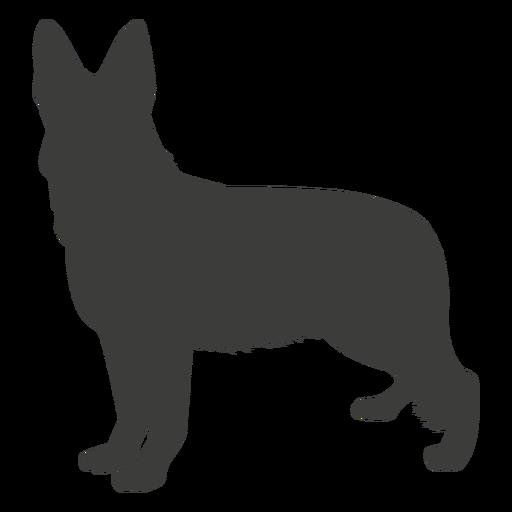 German shepherd standing silhouette dog