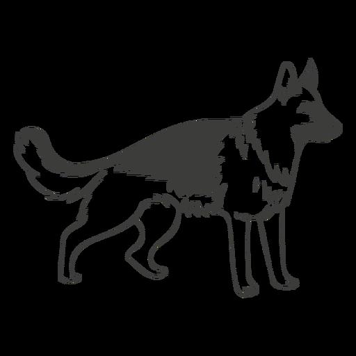 German shepherd staring hand drawn dog