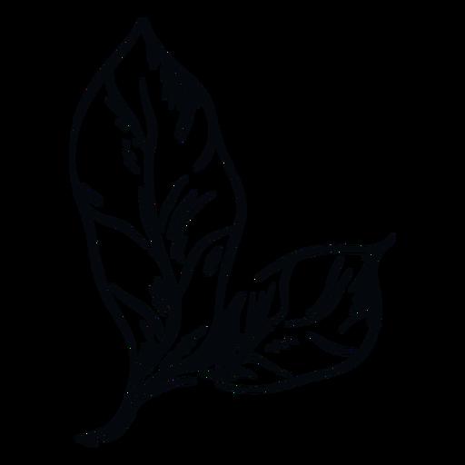 Leaf black and white illustration leaf