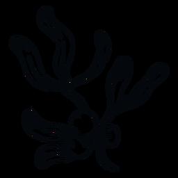 Muérdago bayas rama muérdago blanco y negro
