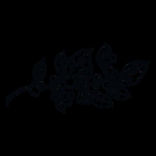 Planta de mu?rdago negro y blanco ilustraci?n mu?rdago