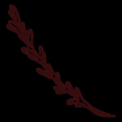 Planta rama planta dibujada a mano Transparent PNG