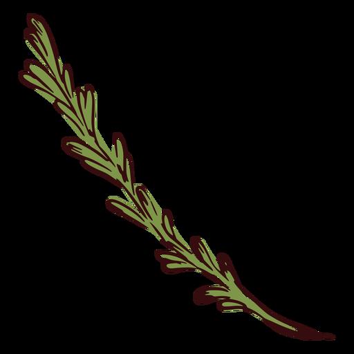 Plant branch illustration plant Transparent PNG