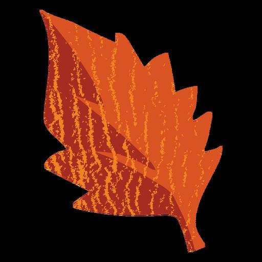 Pointed leaf flat leaf Transparent PNG