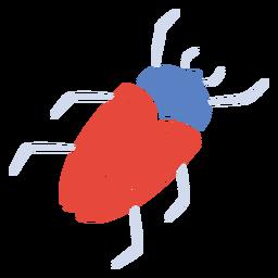 Red beetle flat beetle