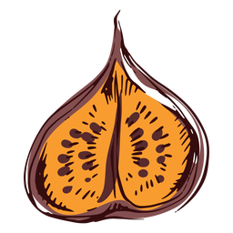 Sliced fig illustration fig