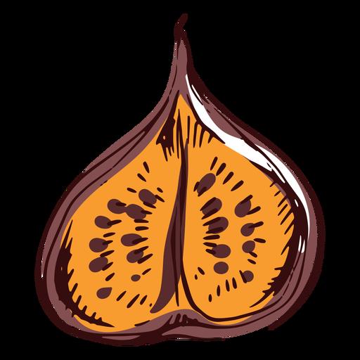 Sliced fig illustration fig Transparent PNG