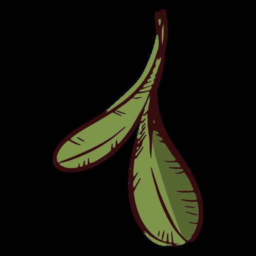 Two leaves decoration illustration leaves