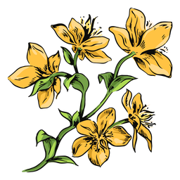 Yellow flowers branch illustration flowers