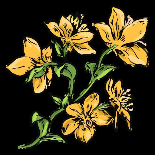 Flores amarillas rama ilustraci?n flores